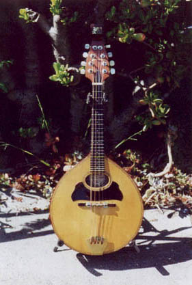The Acoustic Mandolin