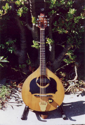 The Acoustic Mandola