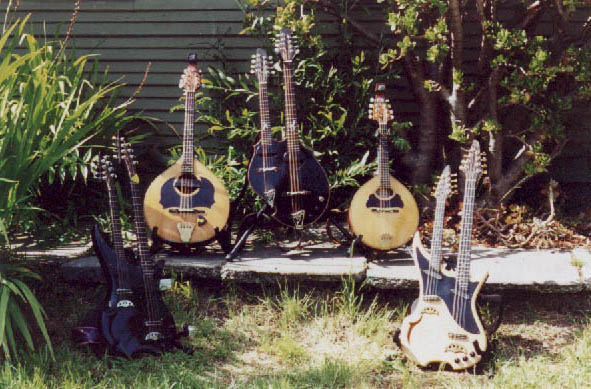 Lief's Mandolin Family